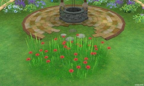 アストルティアの赤色花・3