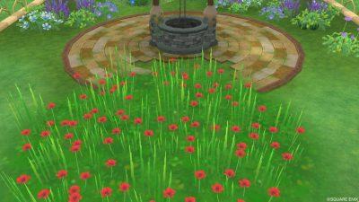 アストルティアの赤色花・4