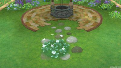 アストルティアの白色花・2