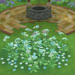 アストルティアの水色花・3