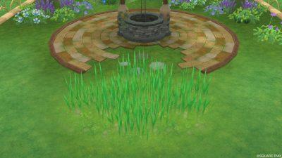 アストルティアの青草・3