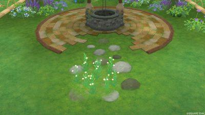 アストルティアの白小花・2