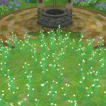 アストルティアの白小花・4