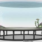 大型の丸い水そう
