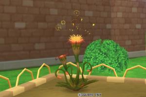 炎の領界の植物・大