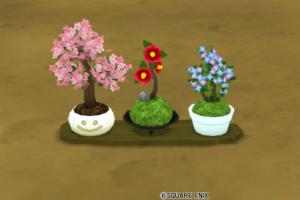 花盆栽セット