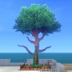 【ハウジング】庭具 > その他(庭)「小鳥の止まり木の畑」