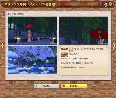 0426桜、林道、名残雪。