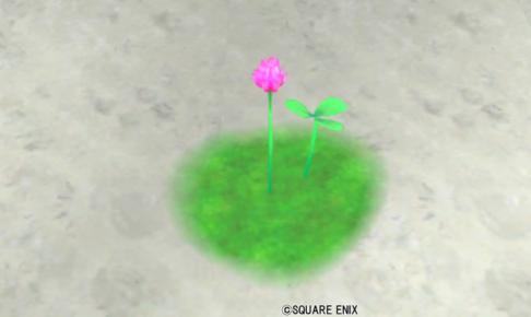 【ハウジング】庭具 > 花・植物(庭)「プクレットの桃花」