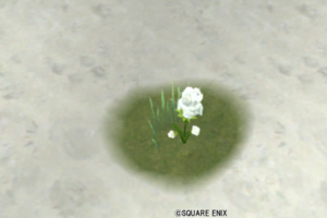 【ハウジング】庭具 > 花・植物(庭)「ティプローネ淡雪花」