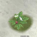 【ハウジング】庭具 > 花・植物(庭)「ティプローネ薄紫花」