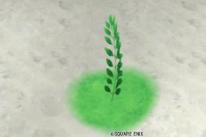 【ハウジング】庭具 > 花・植物(庭)「レビュールマリー」
