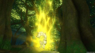 【ドラクエ10】ヒエログリフ「嵐なき森に佇む獣の王」(嵐の領界)
