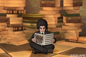 【ドラクエ10】しぐさ「画集を読む」