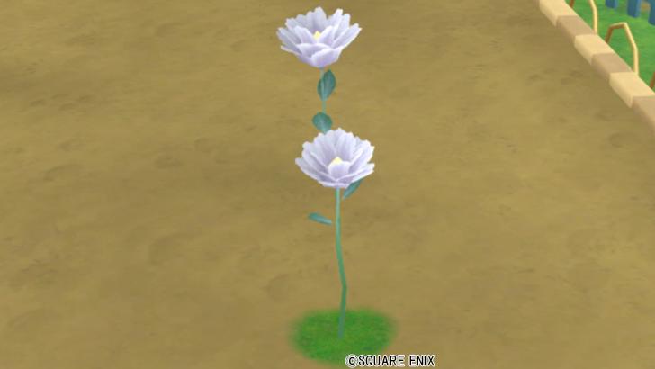 【ハウジング】庭具 > 花・植物(庭)「夢幻大花」