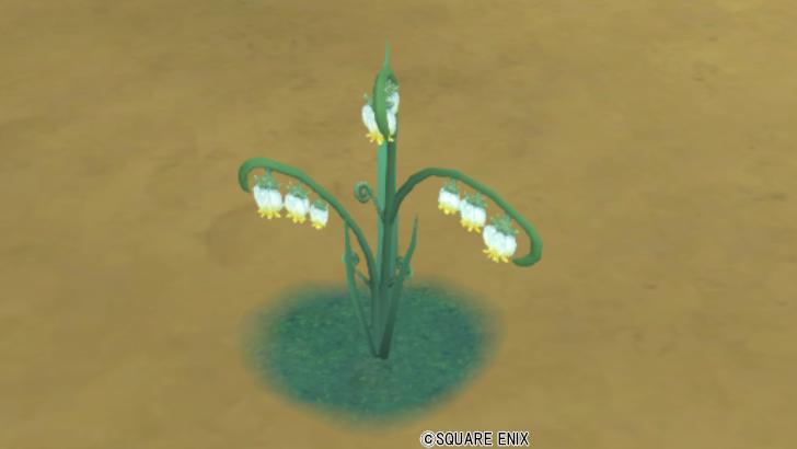 【ハウジング】庭具 > 花・植物(庭)「エテーネスズラン」