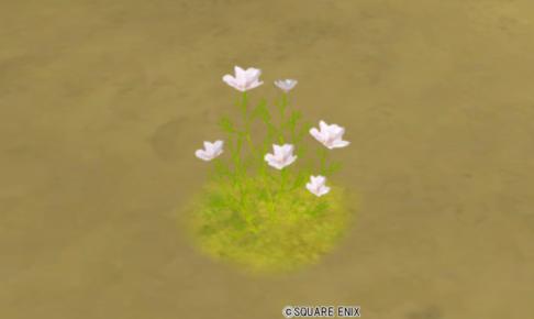 【ハウジング】庭具 > 花・植物(庭)「ローヌ薄桃花」
