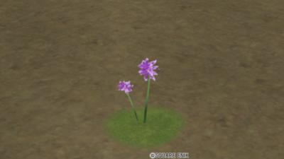 【ハウジング】庭具 > 花・植物(庭)「ゆうらくレンゲ」