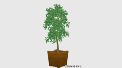 【ハウジング】家具 > 花・植物「純喫茶の観葉植物」